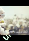 100%-organic-cotton